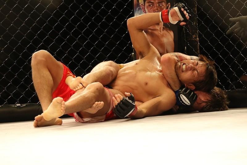 Wedden op UFC en MMA
