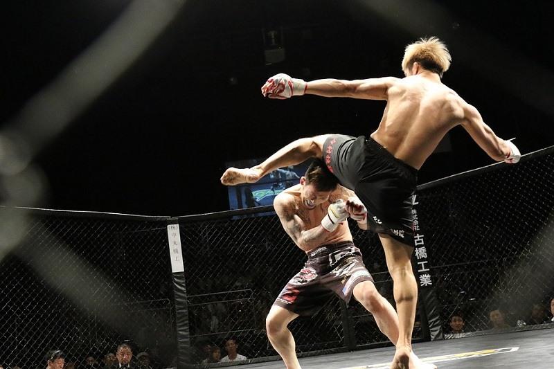 Wedden op de UFC